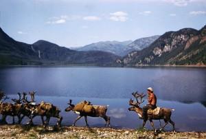 République Sakha, Yakoutie. L'été dure 2 mois.